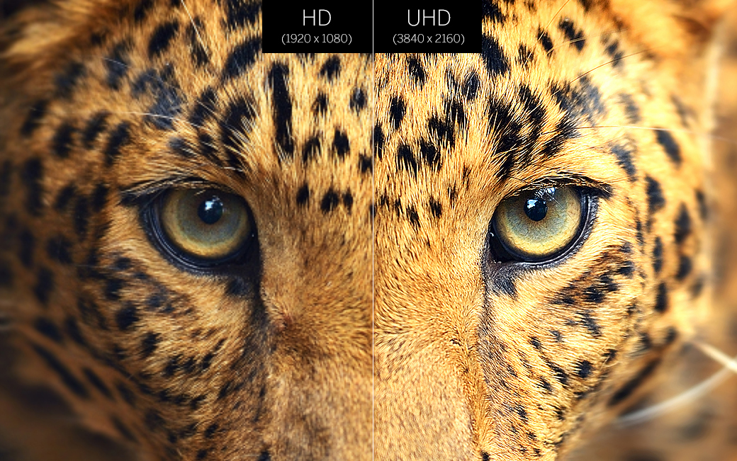 Everything in Ultra HD