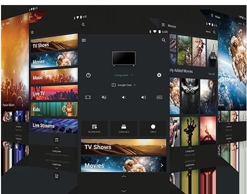 SmartCast App Menus