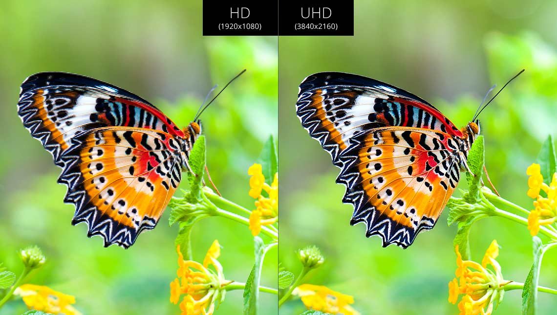 HD vs. Ultra HD
